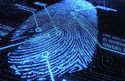 Fingerprint Matching and Verification